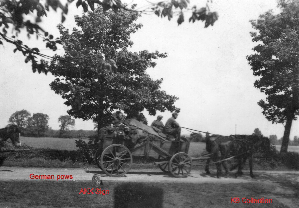 Dorset Regiment 6Pdr AT Gun 1945. photo German pows with wagon kb.jpg